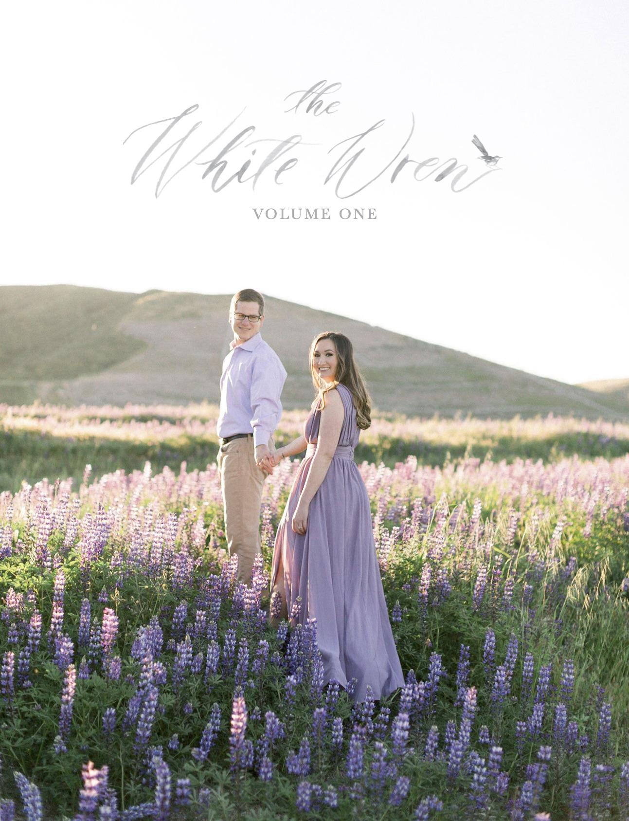 White Wren